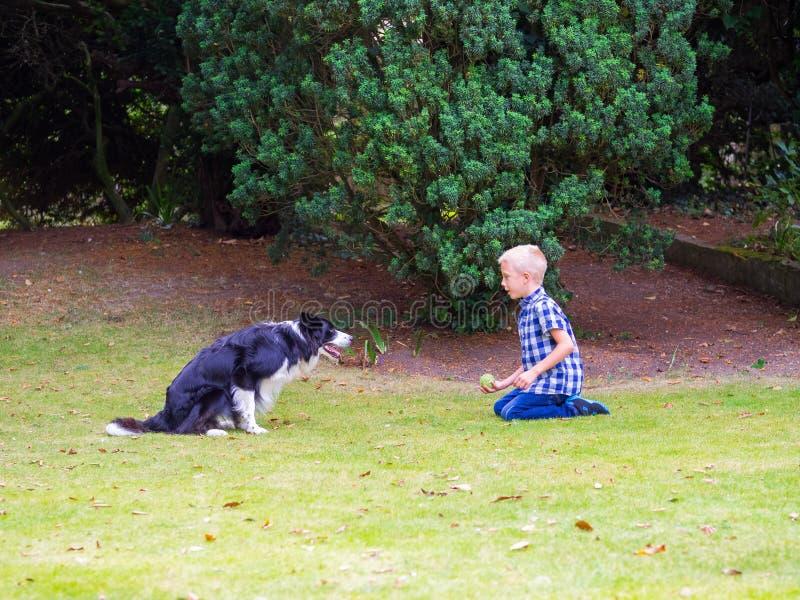 Het Spelen van de jongen met Hond stock afbeelding