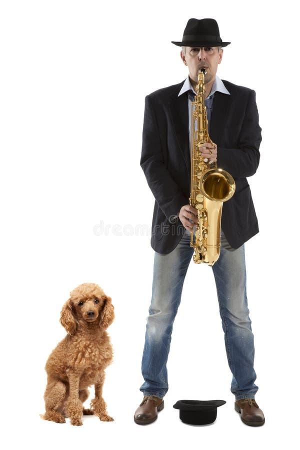 Saxofonist en hond stock foto