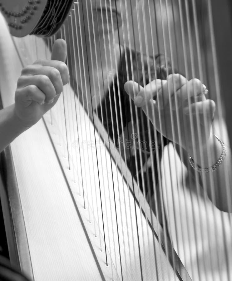 Het spelen van de vrouw harp, detail stock afbeelding