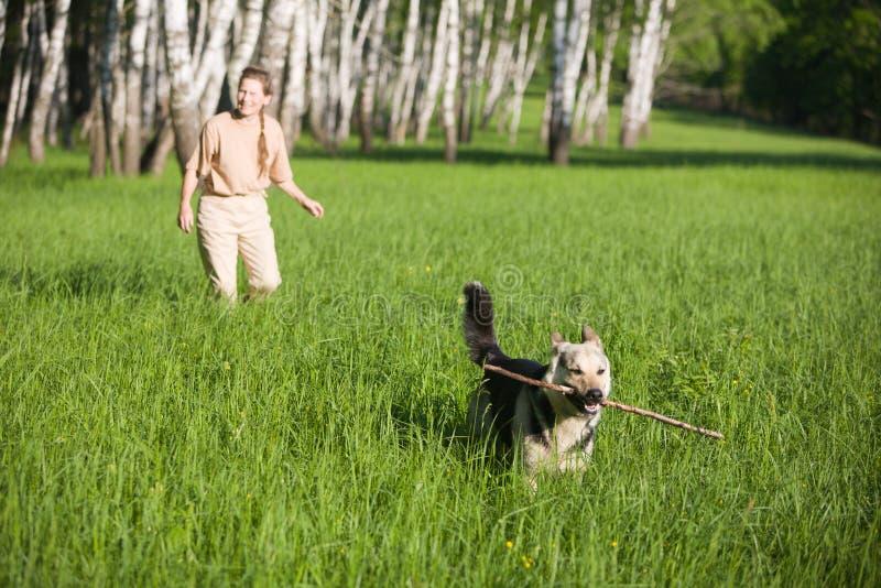 Het spelen van de vrouw hond royalty-vrije stock foto