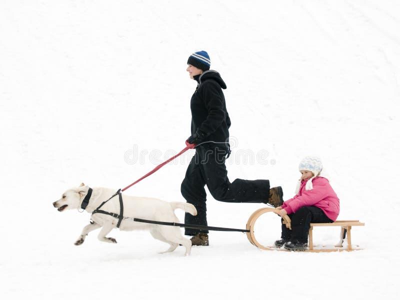 Het spelen van de winter met hond royalty-vrije stock foto