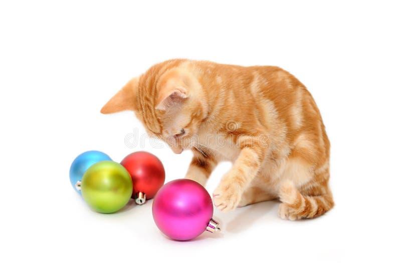 Het spelen van het katje Kerstmisballen stock afbeelding
