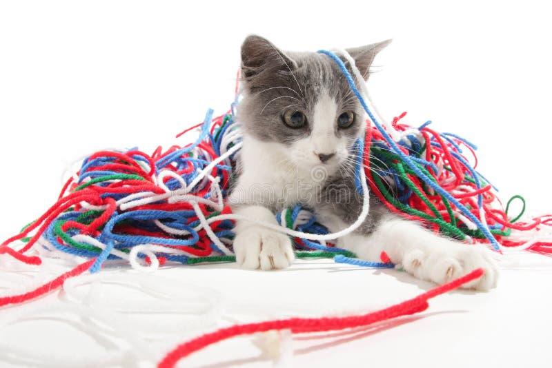 Het spelen van het katje met garen royalty-vrije stock fotografie