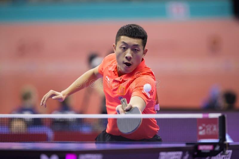 Het spelen van Xu Xin van China tijdens Pingpong Chapionship in Maleizen royalty-vrije stock afbeeldingen