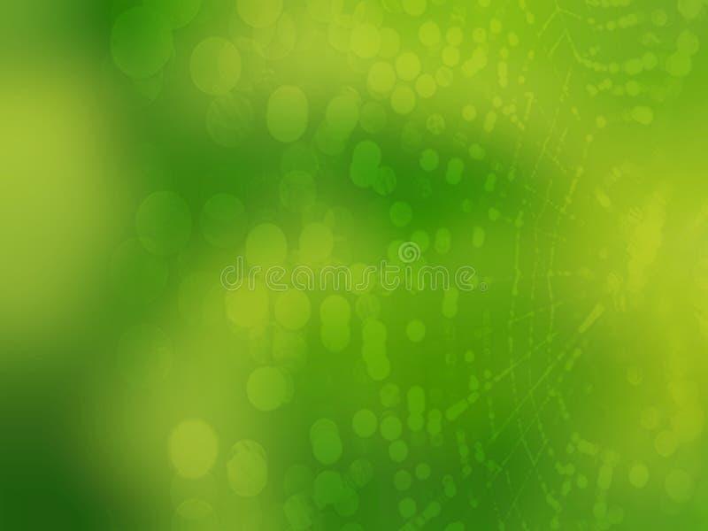 Het spinnewebachtergrond van de onduidelijk beeld bokeh groene aard vector illustratie