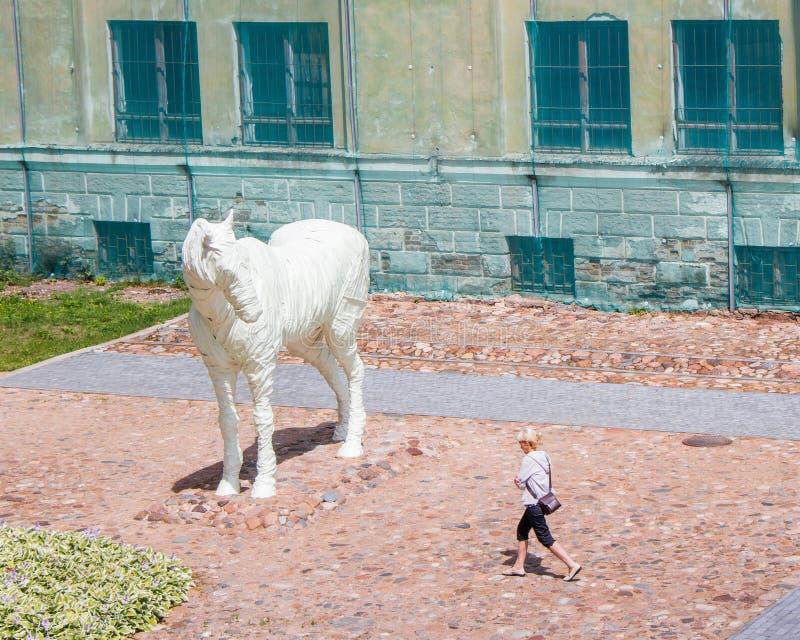 Het Spook van de Dinaburg-vesting is een wit paard Zij draaide haar hoofd aan het meisje die overgaan door stock afbeelding