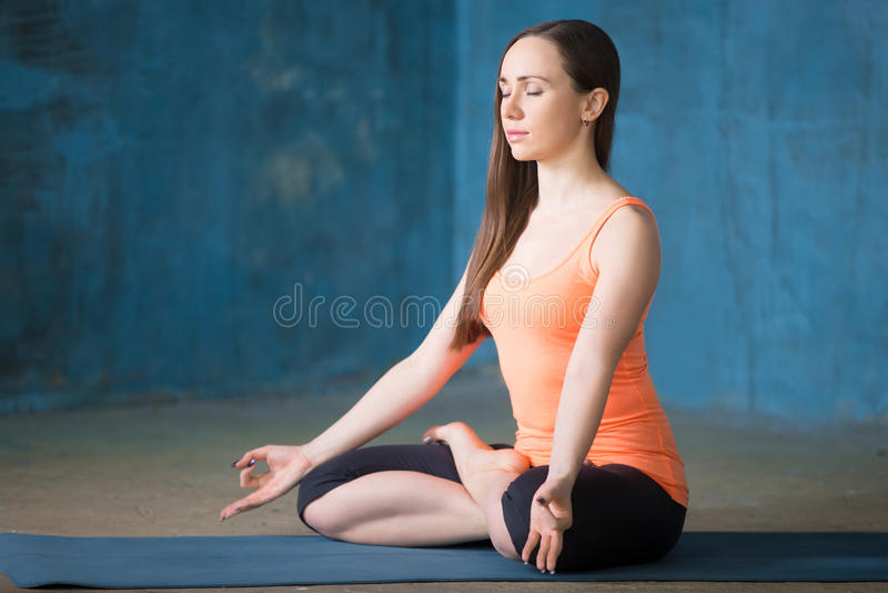 Het sportieve mooie jonge vrouw mediteren stock foto's