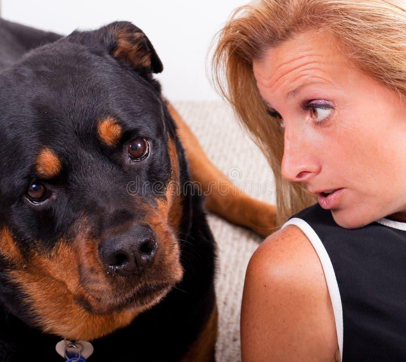 Het spreken aan de Hond stock afbeeldingen