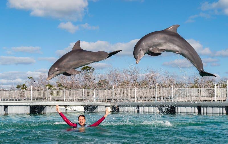 Het springen dolfijnen Vrouw die met dolfijnen in blauw water zwemmen stock fotografie