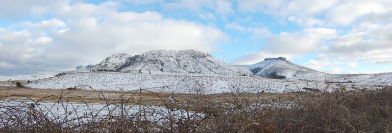 Het sprookjesland van de sneeuw stock foto