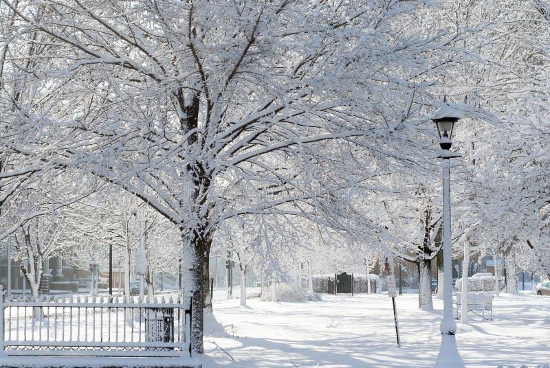 Het sprookjesland van de winter stock afbeelding