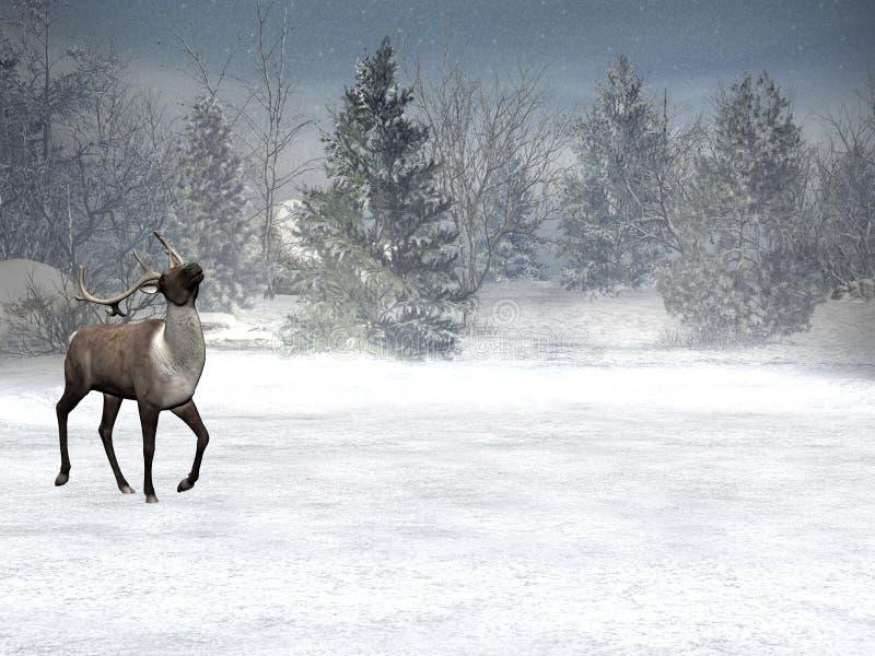 Het sprookjesland van de winter, Kerstmis vector illustratie