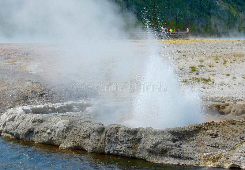 Het spuiten Geiser die van Stoom bij het Nationale Park van Yellowstone laten royalty-vrije stock fotografie