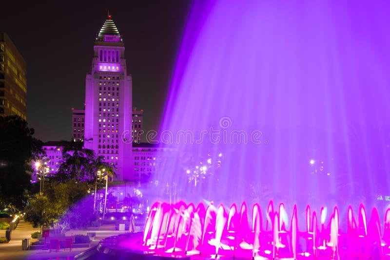 Het Stadhuis van Los Angeles zoals die van het Grote Park wordt gezien stock fotografie