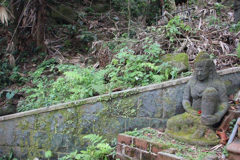 Het standbeeld in het bos van Hong Kong stock afbeelding