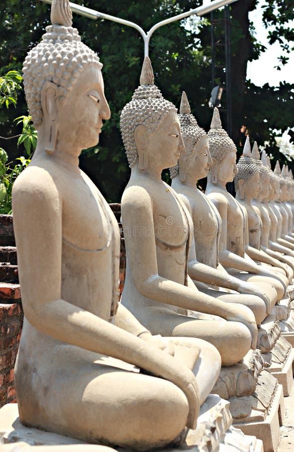 Het standbeeld van Boedha in Ayutthaya royalty-vrije stock foto's