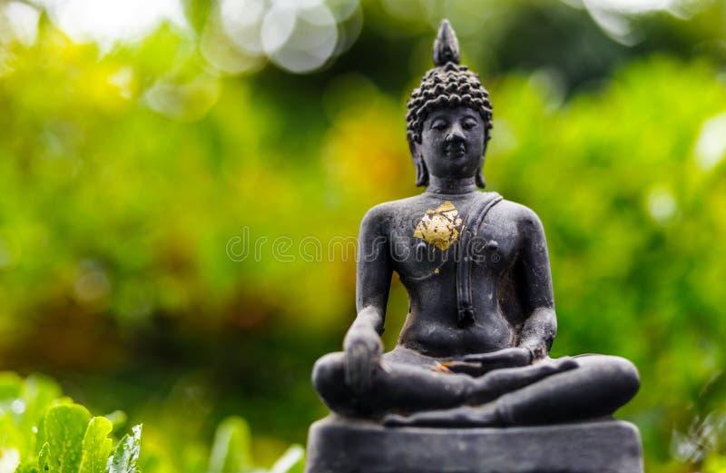 Het standbeeld van Boedha op bokeh stock foto