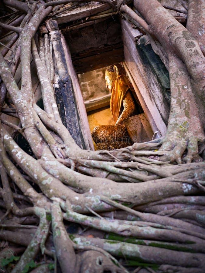 Het Standbeeld van Boedha in Raamkozijn bij oude tempel in Thailand stock fotografie