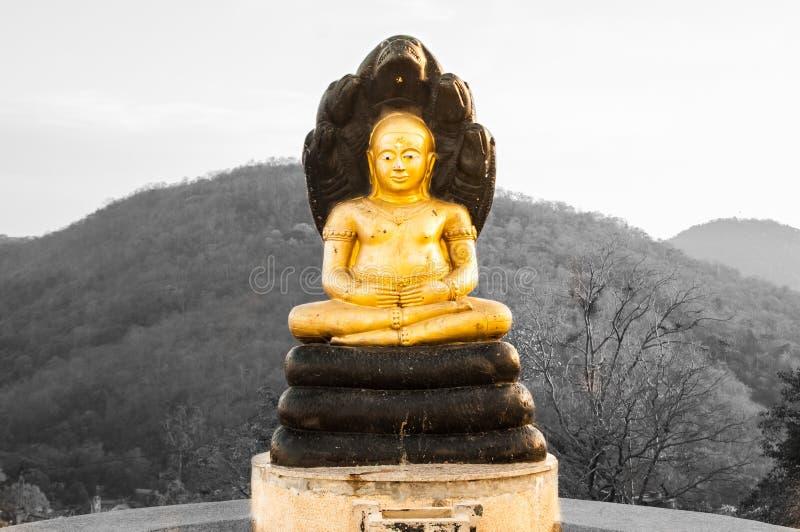 Het standbeeld van Boedha in zonsondergang bij Phrabuddhachay-Tempel stock foto