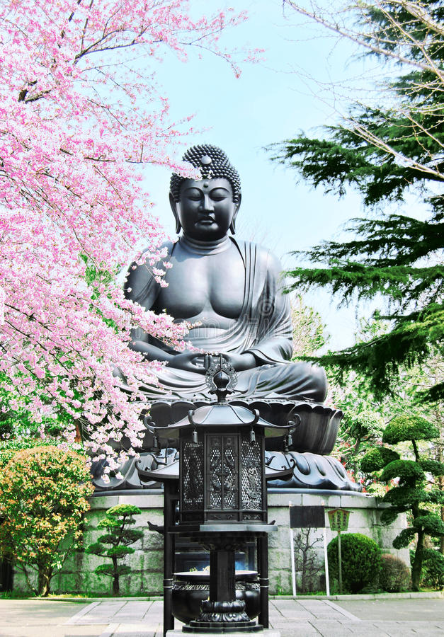 Het standbeeld van Budha en sakuraboom royalty-vrije stock afbeelding