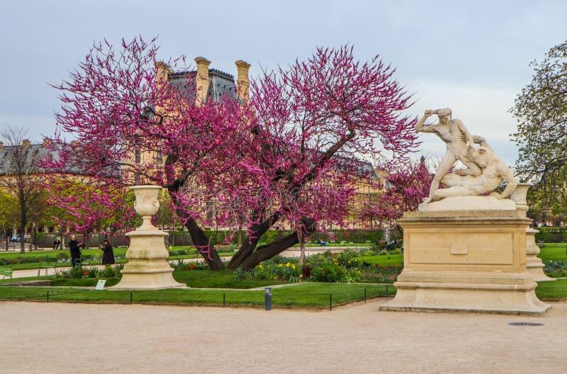 Het Standbeeld van hercules en Minotaur-in de prachtige tuin van de lentetuileries Parijs Frankrijk April 2019 stock afbeeldingen