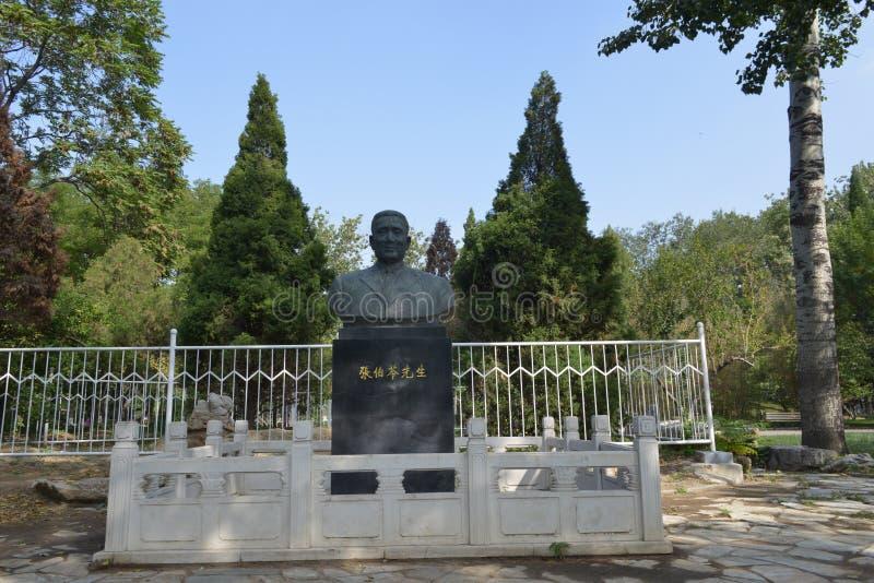 Het standbeeld van Zhang de boling-stichter van Nankai-Universiteit stock afbeelding