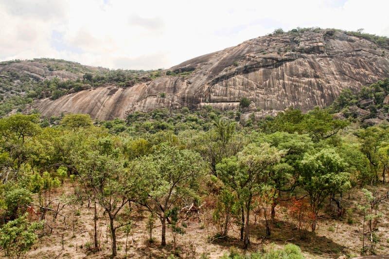 Het steken van rotsen van het Nationale Park van Matopos, Zimbabwe stock afbeeldingen