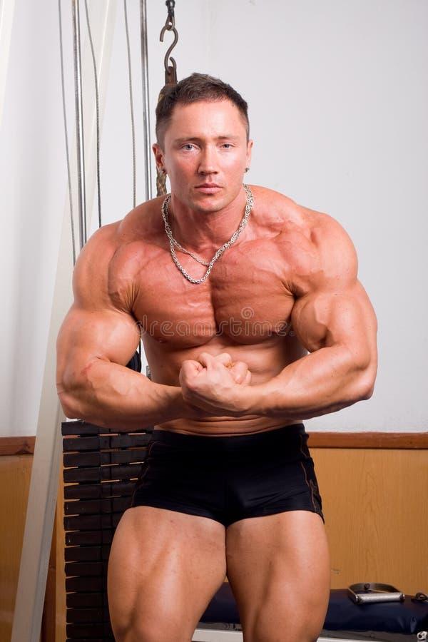 Het stellen van de bodybuilder royalty-vrije stock foto