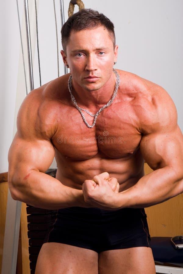 Het stellen van de bodybuilder stock afbeelding