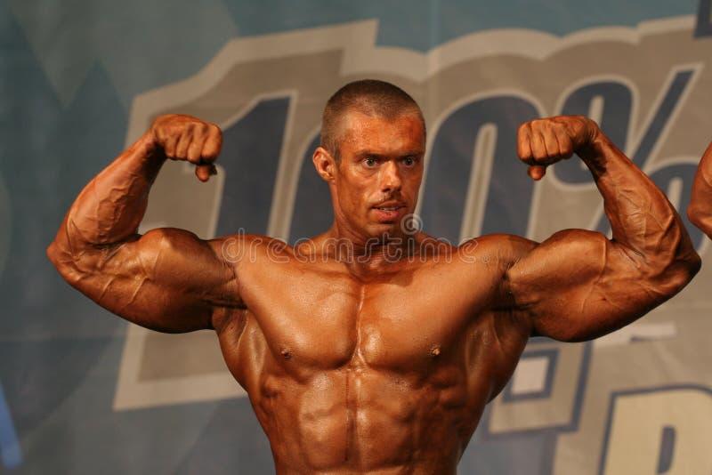Het stellen van de bodybuilder stock foto's