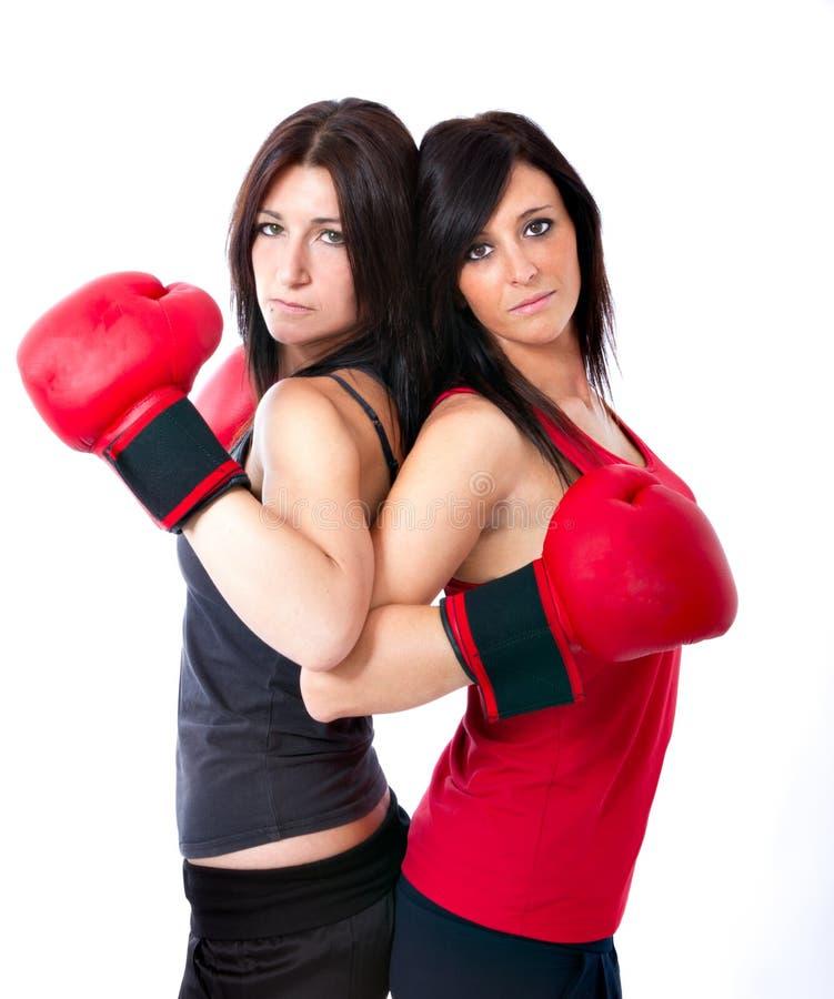 Het stellen van de bokser royalty-vrije stock afbeelding