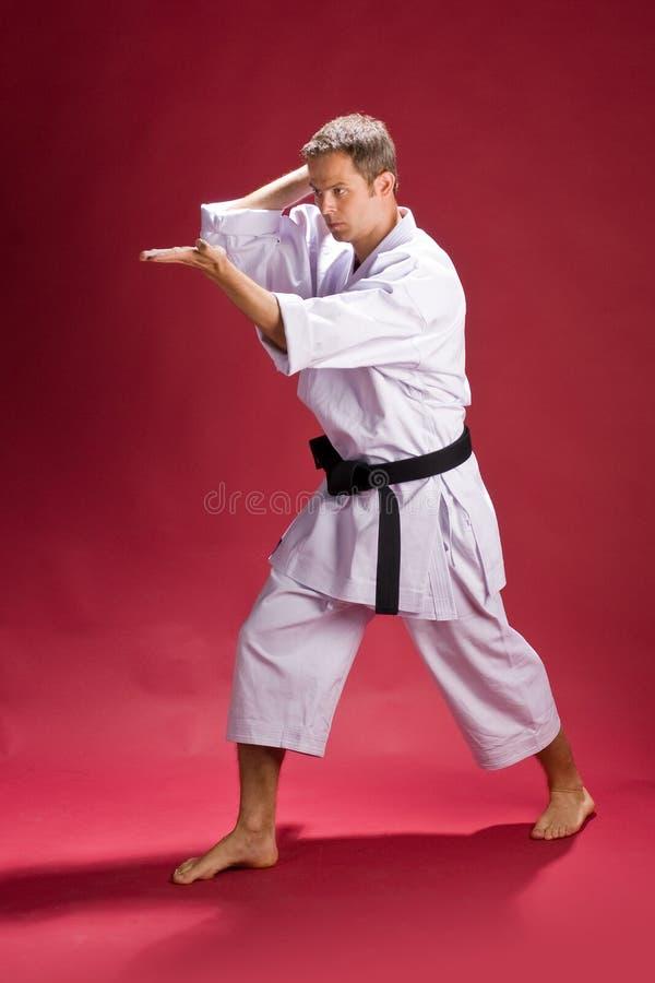 Het stellen van de mens voor karate royalty-vrije stock afbeeldingen