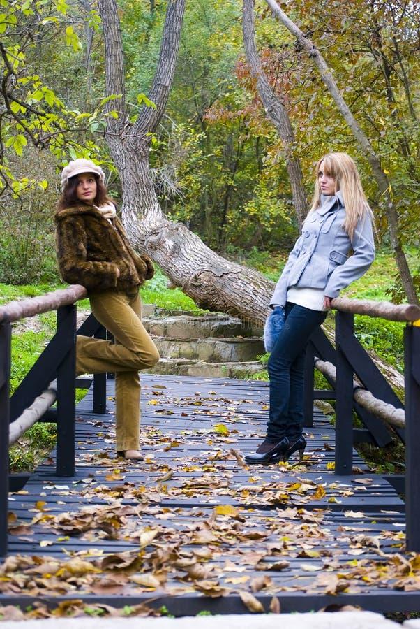 Het stellen van het meisje op houten brug royalty-vrije stock afbeelding