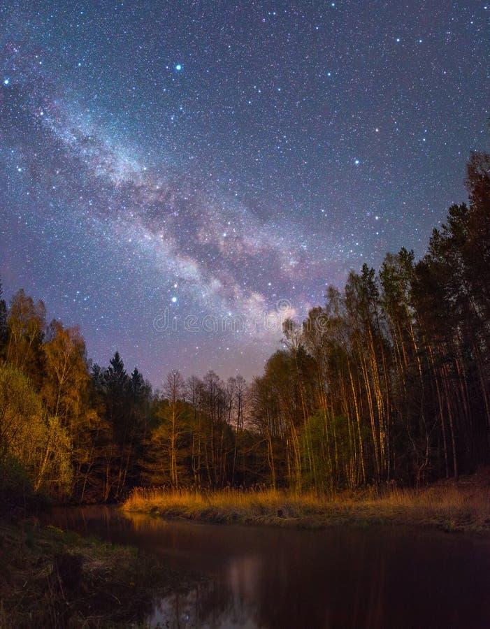 Het sterrige landschap van de Nacht stock fotografie