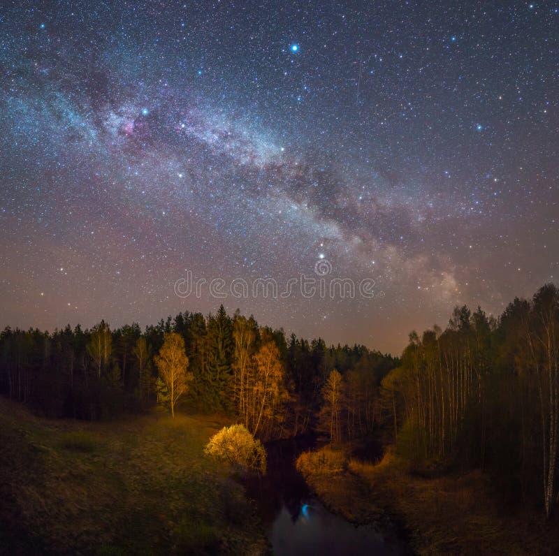 Het sterrige landschap van de Nacht stock afbeelding