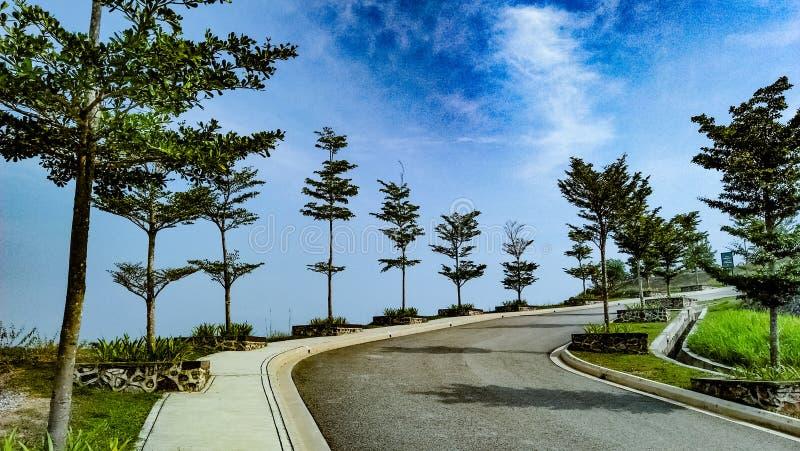 Het stijgen voor een park op de heuvel stock foto's