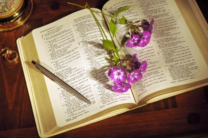 Het stilleven van de bijbel stock foto's