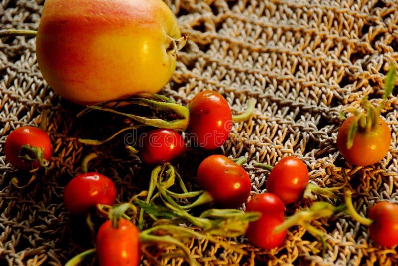 Het stilleven van de herfst eglantine royalty-vrije stock fotografie