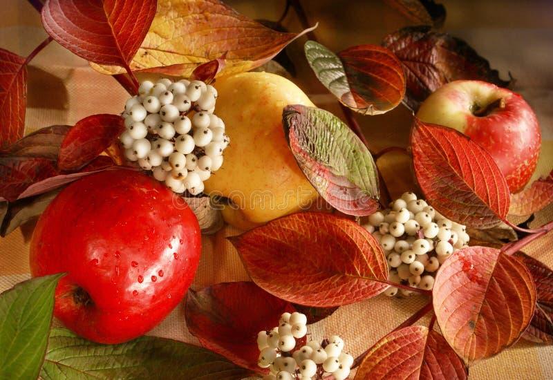 Het Stilleven van de herfst met appelen stock afbeeldingen