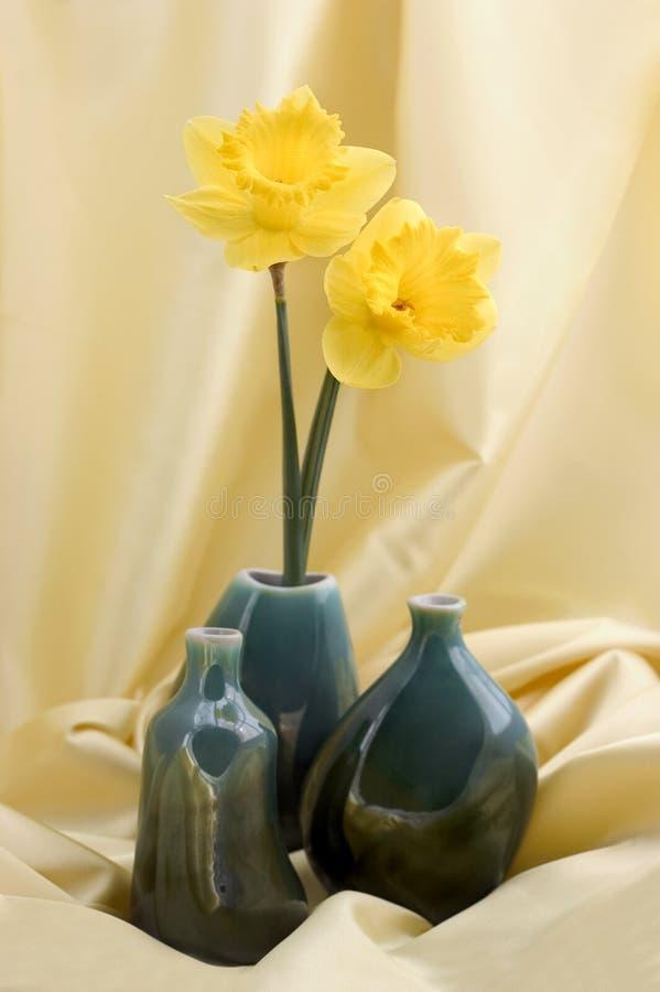 Het stilleven van de lente stock foto