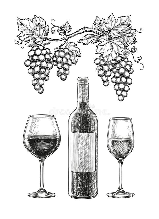 Het Stilleven van de wijn stock illustratie