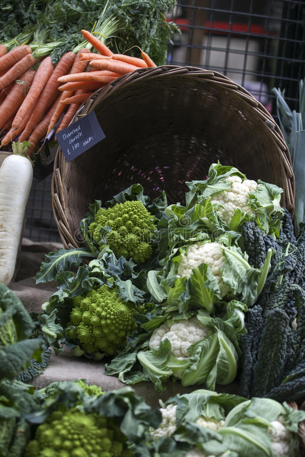 Het Stilleven van van romanescobloemkool of broccoli hoofden royalty-vrije stock afbeeldingen
