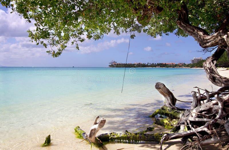 Het Strand de Caraïben III van Aruba stock afbeelding