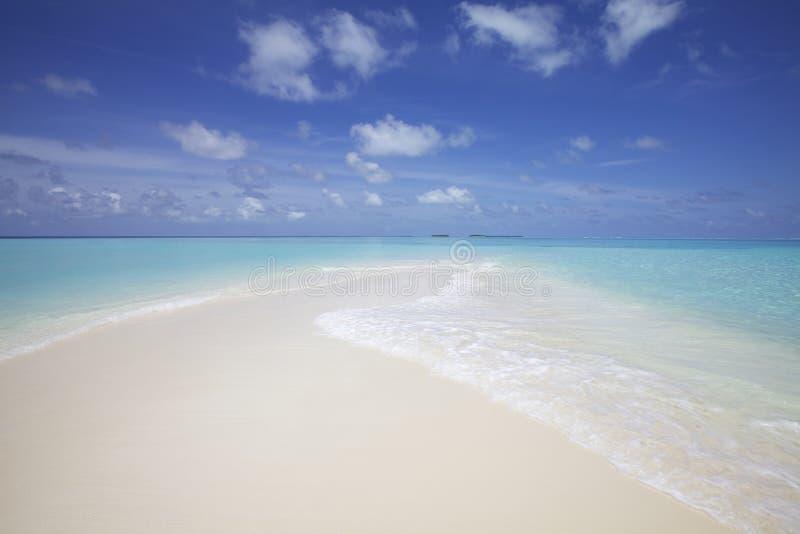 Het Strand de Maldiven van het zand stock afbeelding