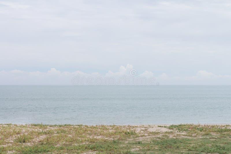Het strand met gras en het overzees met niemand royalty-vrije stock afbeelding