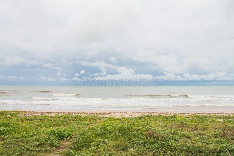 Het strand met gras en het overzees met niemand royalty-vrije stock afbeeldingen