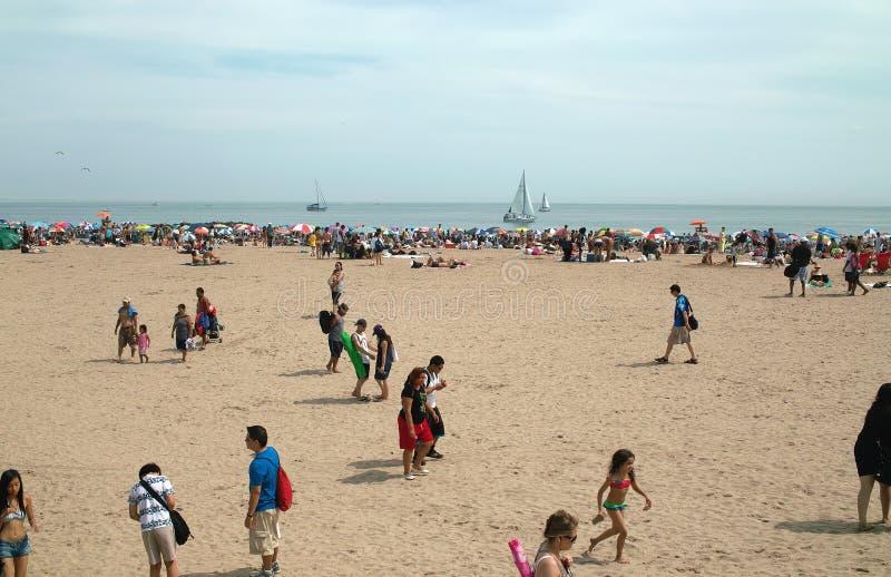 Het Strand New York van het Eiland van het konijn royalty-vrije stock afbeelding