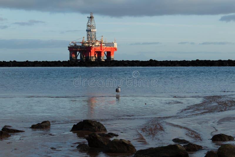 Het strand overzeese van Lasteresitas mening met olieplant en zeemeeuw stock afbeelding