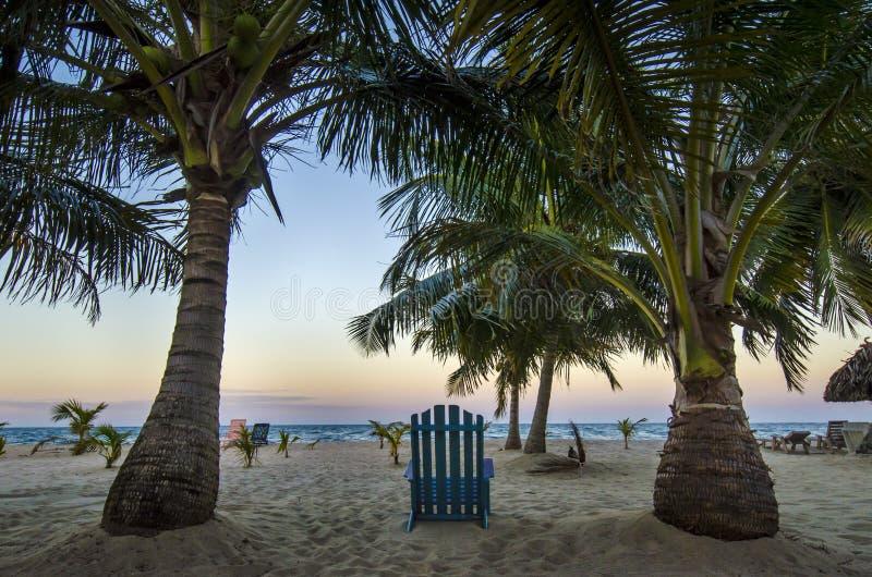 Het strand roept royalty-vrije stock afbeeldingen