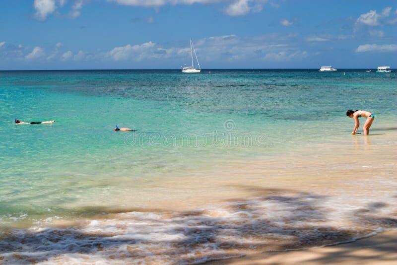 Het Strand van Barbados royalty-vrije stock fotografie